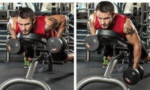 Какие мышцы следует тренировать вместе